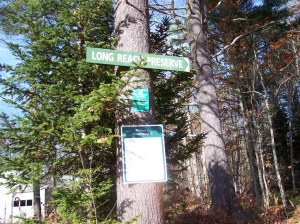 Hiking the deep forests of Maine